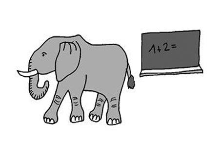 Länge Elefant und Tafel